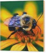 005 Sleeping Bee Series Wood Print