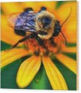 006 Sleeping Bee Series Wood Print