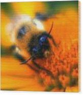 007 Sleeping Bee Series Now Awake   Ovo Wood Print