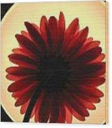 00951 Wood Print