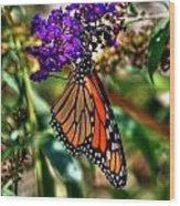 011 Making Things New Via The Butterfly Series Wood Print
