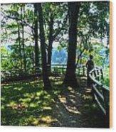 012b Niagara Gorge Trail Series  Wood Print