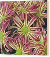 015 Pink And Yellow Flowers Wood Print