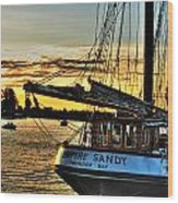 016 Empire Sandy Series Wood Print