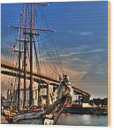 028 Empire Sandy Series  Wood Print