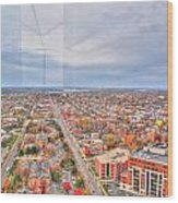 031 Series Of Buffalo Ny Via Birds Eye West Side Wood Print