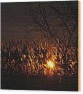 06 Sunset Wood Print