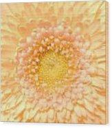0625c Wood Print
