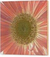 0626a1 Wood Print