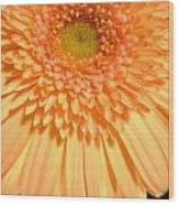 0627c3 Wood Print
