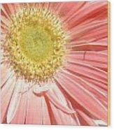 0628a-002 Wood Print