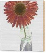 0645a2-1 Wood Print
