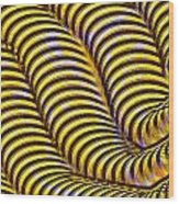 0647 Abstract Thought Wood Print