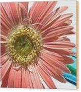 0663a-5c Wood Print