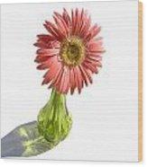 0666a1 Wood Print