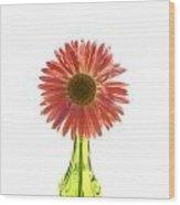 0676a Wood Print