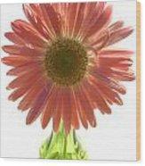0681a2 Wood Print