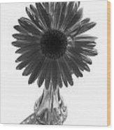 0682a3 Wood Print