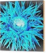 0687c-007 Wood Print