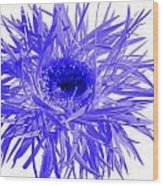 0687c-015 Wood Print