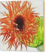 0690c-003 Wood Print