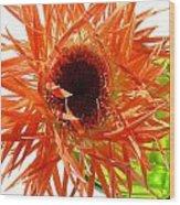 0690c-009 Wood Print