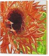 0690c-013 Wood Print