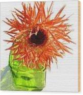 0690c-015 Wood Print