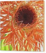 0692c-002 Wood Print