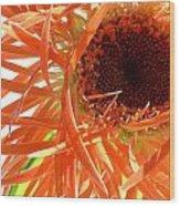 0692c-006 Wood Print