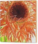 0692c-009 Wood Print
