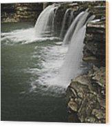 0804-0013 Falling Water Falls 4 Wood Print