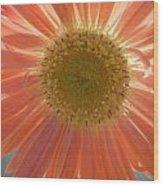 0805 Wood Print