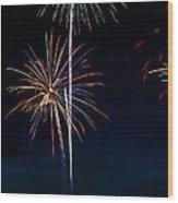 20120706-dsc06455 Wood Print