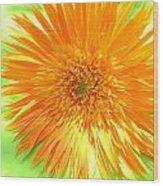 6174-001c Wood Print