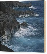 A Coastal View Of The Southeast Corner Wood Print