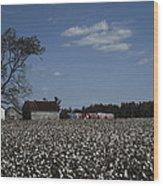 A Cotton Field Surrounds A Small Farm Wood Print