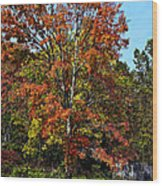 A Country Place Wood Print