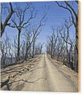 A Dirt Road Runs Along A Mountain Top Wood Print