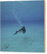 A Diver On A Scooter Explores The Clear Wood Print