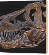 A Genuine Fossilized Skull Of A T. Rex Wood Print