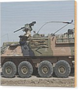 A Lav IIi Infantry Fighting Vehicle Wood Print