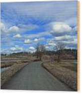 A Road View In Wildlife Refuge Wood Print