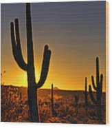 A Saguaro Sunrise  Wood Print