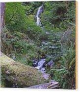 A Small Waterfall Wood Print