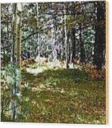 A Spot Of Sunlight Wood Print