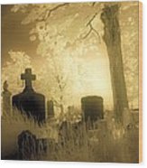 Abandoned And Overgrown Cemetery Wood Print