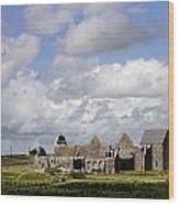 Abbeyknockmoy, Cistercian Abbey Of Wood Print