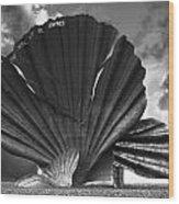 Aldeburgh Scallop Wood Print