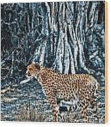 Alert Cheetah Wood Print by Darcy Michaelchuk